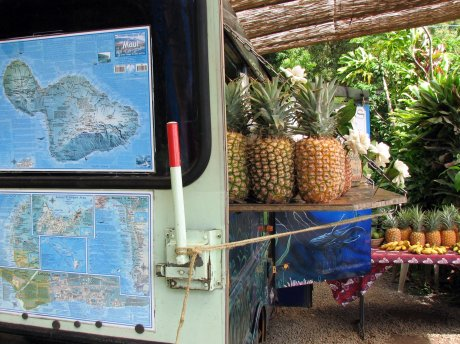 Twin Falls fruit stand on the Hana Highway